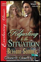 descargar epub Ajustándose a la situación – Autor Bellann Summer gratis
