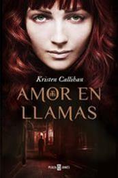 descargar epub Amor en llamas – Autor Kristen Callihan gratis