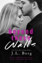 descargar epub Beyond these walls – Autor J. L. Berg gratis
