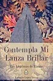 descargar epub Contempla mi lanza brillar – Autor Antonio López Sousa gratis