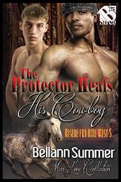 descargar epub El protector cura a su vaquero – Autor Bellann Summer gratis