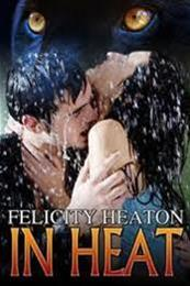 descargar epub In Heat – Autor Felicity Heaton gratis