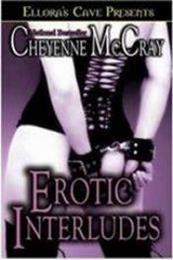 descargar epub Invitación erótica – Autor Cheyenne McCray gratis
