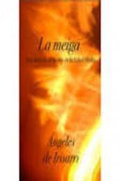 descargar epub La meiga – Autor Ángeles de Irisarri gratis