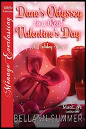 descargar epub La odisea de Dane hacia un día de San Valentin real – Autor Bellann Summer gratis