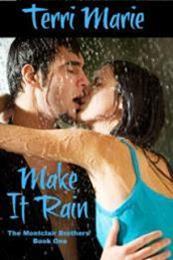 descargar epub Make it rain – Autor Terri Marie