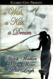 descargar epub Pagando la deuda – Autor Lora Leigh;Mary Wine;Shiloh Walker