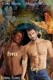 descargar epub Poder del amor – Autor Cree Storm;Maggie Walsh gratis
