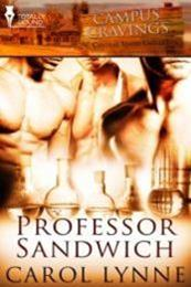 descargar epub Sandwich de  profesor – Autor Carol Lynne gratis