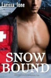 descargar epub Snowbound – Autor Larissa Ione