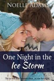 descargar epub The Ice Storm – Autor Noelle Adams