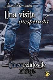 descargar epub Una visita inesperada – Autor Juani Hernández